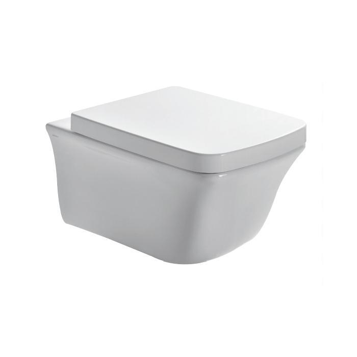 Фото сантехники Сиденье-крышка с микролифтом для унитаза, цвет белый/петли хром