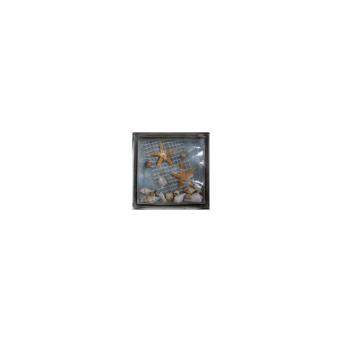 Картинка товара Стеклоблок Эксклюзивный Морская тематика МТ 009Ф Бесцветный 19х19