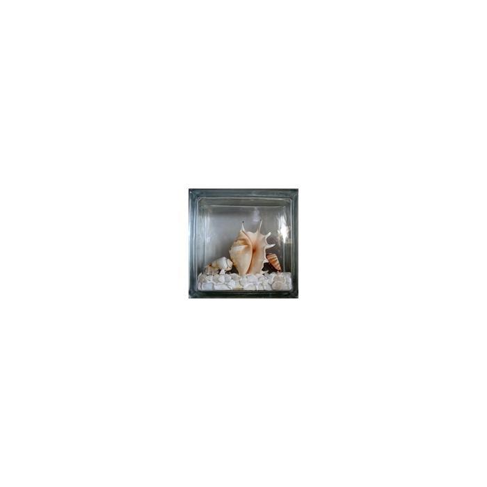Картинка товара Стеклоблок Эксклюзивный Морская тематика МТ 003Б Бесцветный 19х19