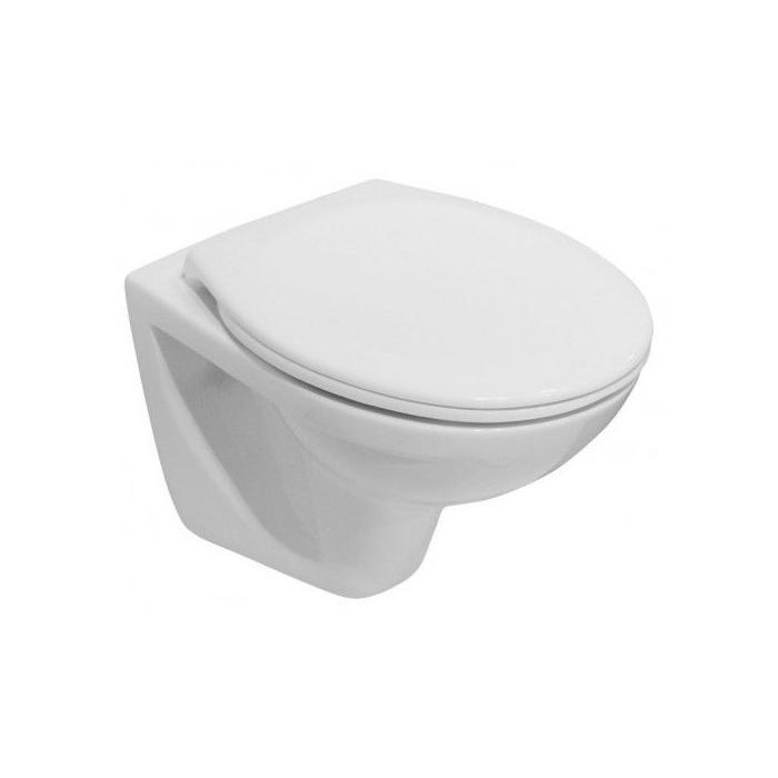 Фото сантехники LYRA-DINO Унитаз подвесной 53х35,5 см, белый, без сидения