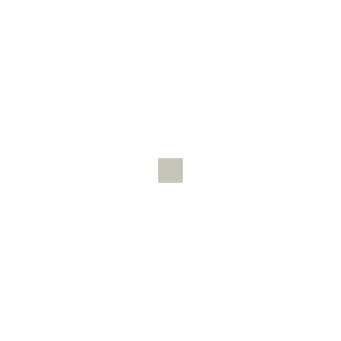 Текстура плитки New Classic Tozzetto Bianco 3x3