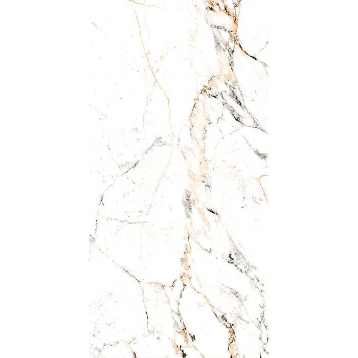Текстура плитки Tucci Gold/P 60x120