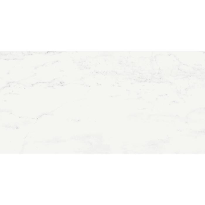 Текстура плитки Шарм Делюкс Бьянко Микел. 60X120 Cer - 2
