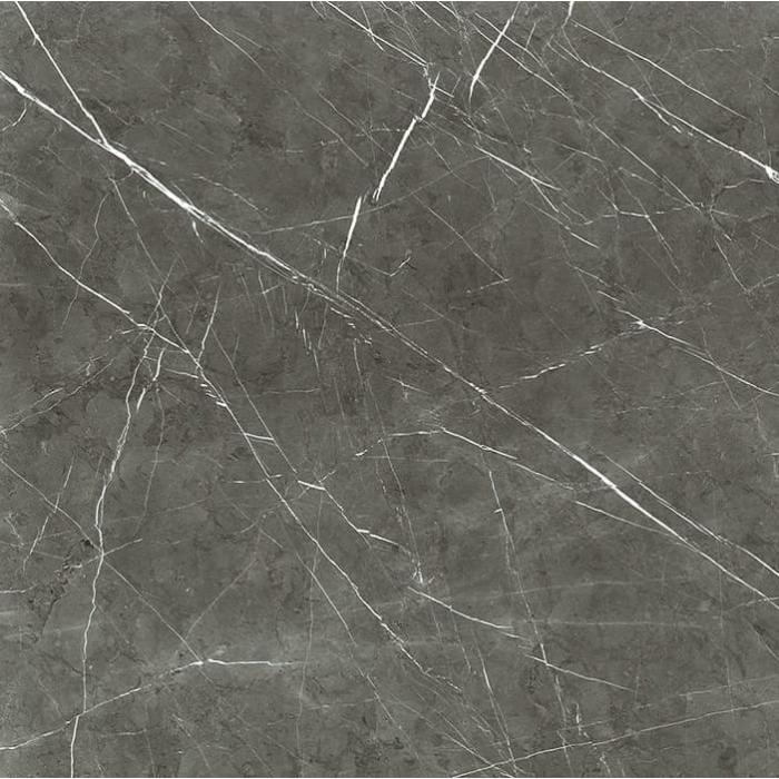 Текстура плитки I Marmi di Rex Marble Gray Naturale 60x60
