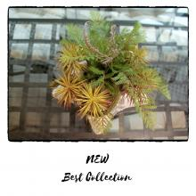 Искусственные цветы от Best Collection уже в продаже